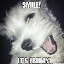 Community Post: Thank God It's Friday - Dog Edition | Friday Dog ... via Relatably.com