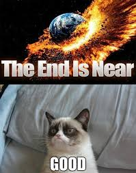 The Grumpy Cat - The End Is Near #GrumpyCat #Memes | Memes ... via Relatably.com