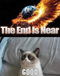 The Grumpy Cat - The End Is Near #GrumpyCat #Memes | Memes ... via Relatably.com
