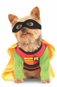 <b>DC</b> Comics Batman Robin Superhero <b>Pet Dog</b> Costume for sale online