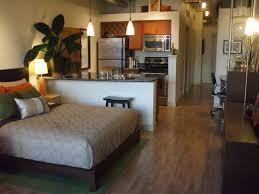 Small Apartment Living Room Small Studio Apartment Breakingdesignnet