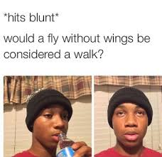 Hits the Blunt Meme Fly Walk - Weed Memes via Relatably.com