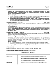 87 enchanting sample professional resume examples of resumes sample professional summary resume