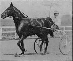 Image result for photos of dan patch