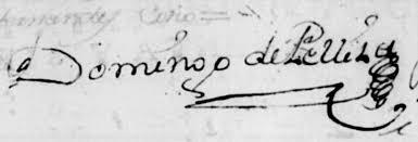 Domingo Pelliza