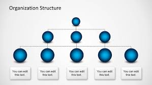 powerpoint tree diagram templates     org chart spheres