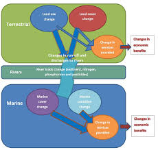 Towards Experimental Ecosystem Accounts for the Great <b>Barrier Reef</b>