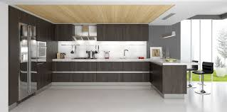 Contemporary Kitchen Cupboards Buy Affordable Kitchen Cabinets Online Modern Rta Cabinets