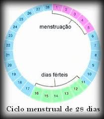Resultado de imagem para DIAS FERTEIS