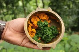 Herbal Preparations: <b>Neem</b> & <b>Turmeric Skin</b> Oil - Sivananda Yoga ...