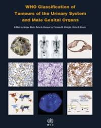 WHO Classification of Tumours of the Urinary System and <b>Male</b> ...