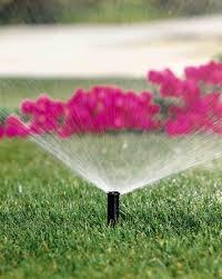 Image result for irrigation