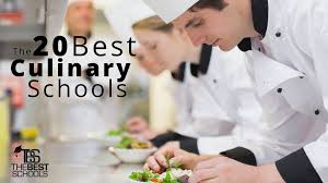 the best culinary schools the best schools