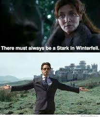 Tony Stark Meme | WeKnowMemes via Relatably.com