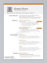 good cv format nice resume templates nice resume brefash good cv format nice resume templates nice resume