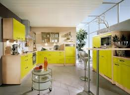 Lemon And Lime Kitchen Decor Kitchen Themes Decorating Ideas With Green Themes Color With Green