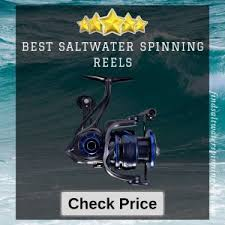 Top 10 Best <b>Saltwater Spinning Fishing Reels</b> Reviews 2019