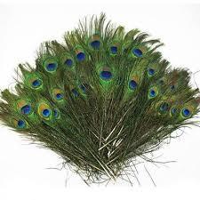 <b>50pcs lots</b> Real Natural Peacock Tail Eyes <b>Feathers</b> 8-12 Inches ZX ...