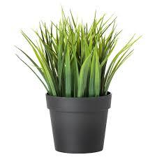 "FEJKA <b>Artificial</b> potted <b>plant</b>, indoor/outdoor <b>grass</b>, Height: 8 ¼"" - IKEA"