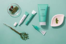 Clear Up Clogged Pores With <b>Laneige Mini Pore</b> Line | Pamper.My