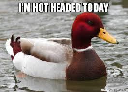 i'm hot headed today - Malicious Advice Mallard | Make a Meme via Relatably.com