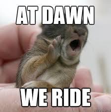Yawning bunny memes | quickmeme via Relatably.com