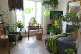 room plants x: download indoor plants room sleep better download