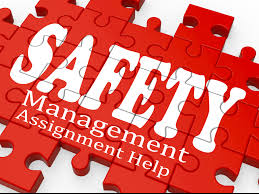 safety management assignment help sample assignment safety management assignment help sample assignment sample assignments custom writing help students assignment help