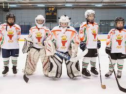 Восьмилетние хоккеисты привезли золотые <b>медали</b> в Читу ...