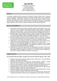 cover letter example profile for resume sample profile statement cover letter example profile for resume ian smith new cv pageexample profile for resume extra medium