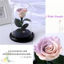 The Little Prince <b>Glass Cover Fresh Preserved</b> Rose Flower ...