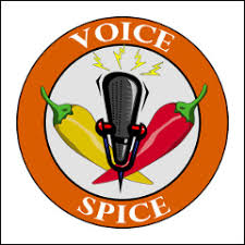 Voice Spice: Online <b>Voice Recorder</b> and Message Sharing