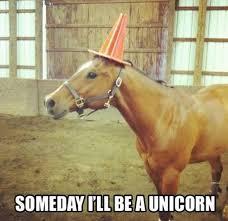 Funny-Horse-Memes-10.jpg via Relatably.com