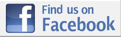 Afbeeldingsresultaat voor facebook follow widget