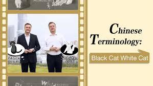 <b>Chinese</b> Terminology: Black Cat <b>White</b> Cat - CGTN