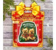 Новогодние <b>свечи</b>: Купить в Астрахани - Цены на Aport.ru