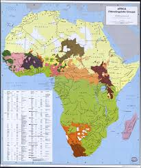 List of <b>ethnic</b> groups of <b>Africa</b> - Wikipedia