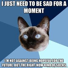 i just need to be sad for a moment i'm not against being hopeful ... via Relatably.com
