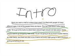 Persuasive Essay Examples nmctoastmasters