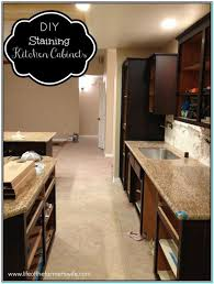 Diy Staining Kitchen Cabinets Staining Oak Kitchen Cabinets Dark Torahenfamiliacom Staining