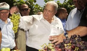 Ariel Sharon's favorite roast <b>chicken</b> | The World from PRX