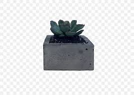 <b>Flowerpot</b> Succulent Plant Cactaceae Bonsai <b>Bird</b>, PNG, 600x581px ...