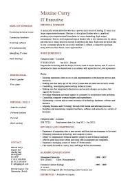 it executive resume  example  sample  technology  technical skills    buy this resume