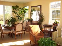 plants for the living room
