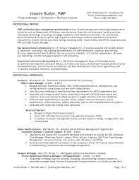 Professional Banking Relationship Manager Templates to Showcase     Employment Reference Letter Bank   customer reference template