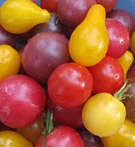 Resultado de imagen de pear cherry tomato