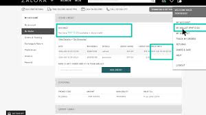 payment options help topics you can view your wallet credit details and exact expiration date in the table under my wallet credit