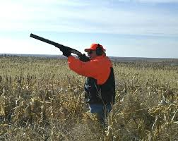 Νεα Διαδικασία και δικαιολογητικά για άδεια κυνηγιου