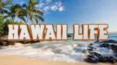 hawaii life caribbean life hgtv law office interior