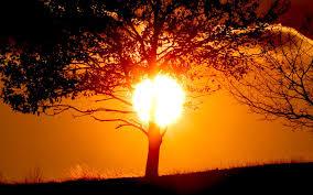 لكل محبي صور الطبيعة  اكبر تجميع لصور الطبيعة Images?q=tbn:ANd9GcSSjXSoqvqx8QV7k6HgCW4ofEs_CiSW4LvOdkxtlo_dt6GuE_m0